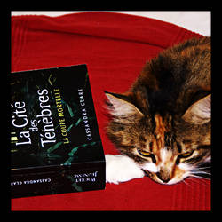 City of Bones : approved by cats by Martange