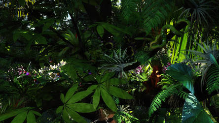 In the jungle by reciprocated