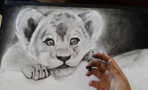 lion cub-----WIP-----