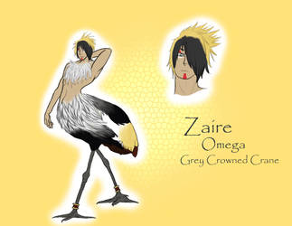 VoS - Zaire by organizationofsouls
