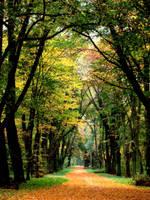 Through the autumn. by Elleonnass