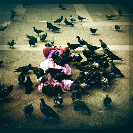 The Birds by SwiFecS