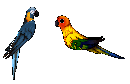 [16.] Parrots FREE by Niampi