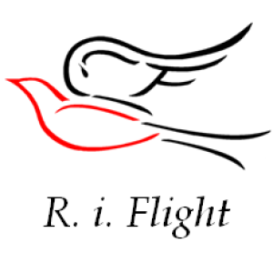 RiFlight's Profile Picture