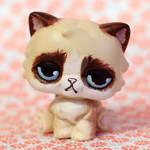 Grumpy Cat inspired LPS custom