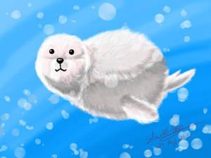 Floofy Seal