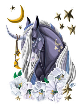 Unicorn Shirt Desgin with Transparent Background