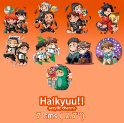 Haikyuu!! Charms