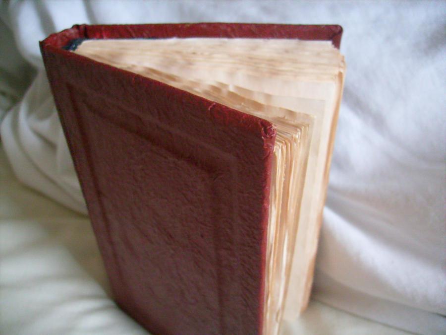 Book Binding Book Binding Mock Red Leather