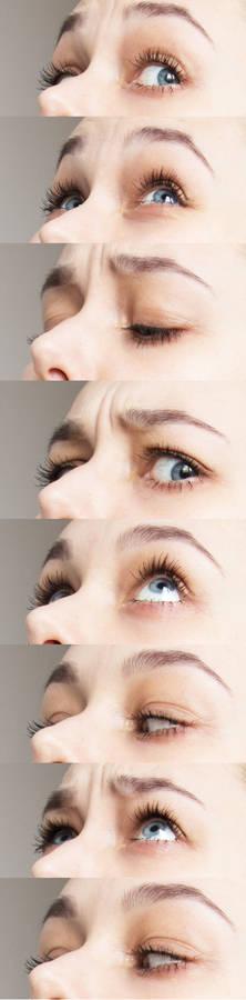 Eyes Ref 3/4 up