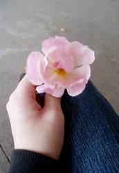 He Gave me a Flower. . . by KiraNekoXIII