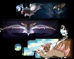 [Dracostryx] Warden Tributes
