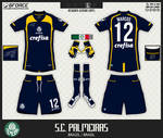 Palmeiras Goalkeeper Kit by gersonlopesfilho