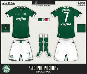 Palmeiras Home Kit by gersonlopesfilho