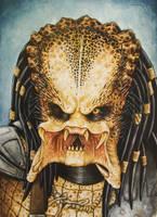 Predator 1 by lorenzothekiller