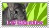 chinchilla stamp by flowertigers