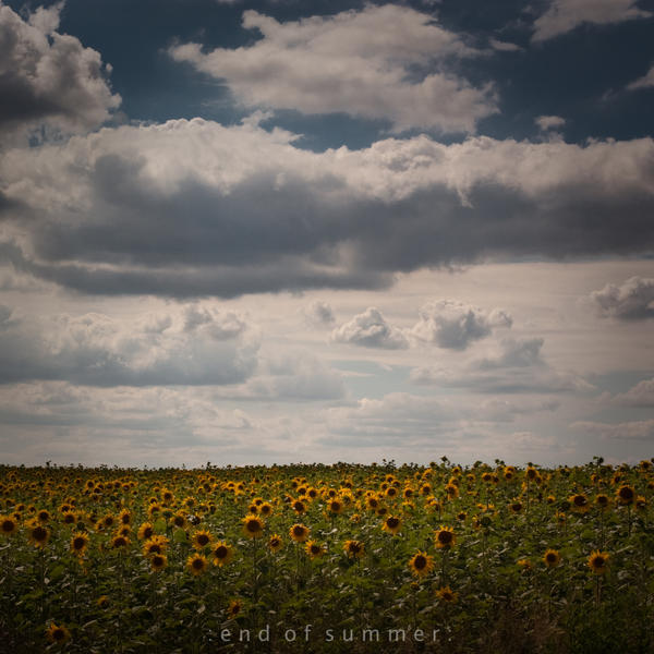 end of summer by Wurstgulasch