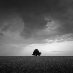 alone in the dark by Wurstgulasch