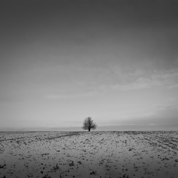 cold days by Wurstgulasch