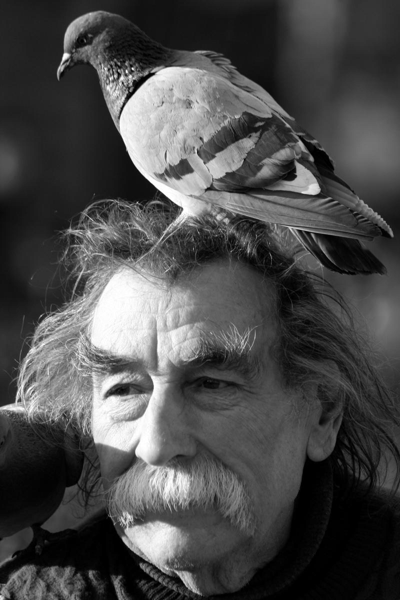 Paris, un pigeon... by AExils