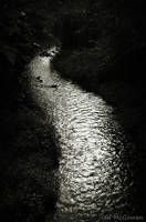 The curve of the river . by 999999999a