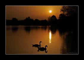 Moonlight Serenade . by 999999999a