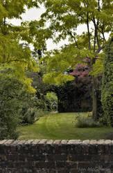 Over the garden wall .