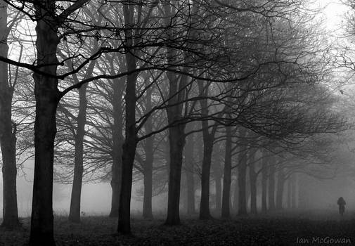 Fog in Cassiobury .