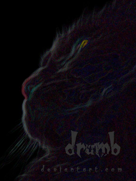 drumb's Profile Picture