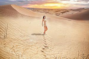 Mad Max Fury Road Wasteland by Molza