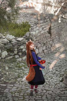 Spice and Wolf cosplay