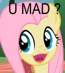 U mad fluttershy ?