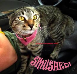 Smushed
