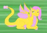 My little Dragon Fluttershy
