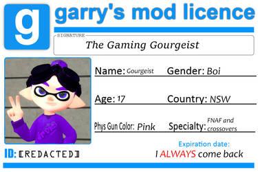 My GMod Licence by JustaRandomGourgeist