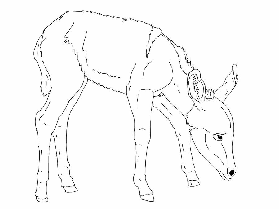Line Drawing Donkey : Donkey adoptables lineart by lolkitteh on deviantart