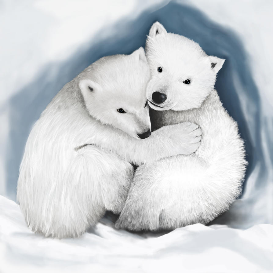 Image Result For Baby Polar Bear