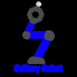 Solitary Robot