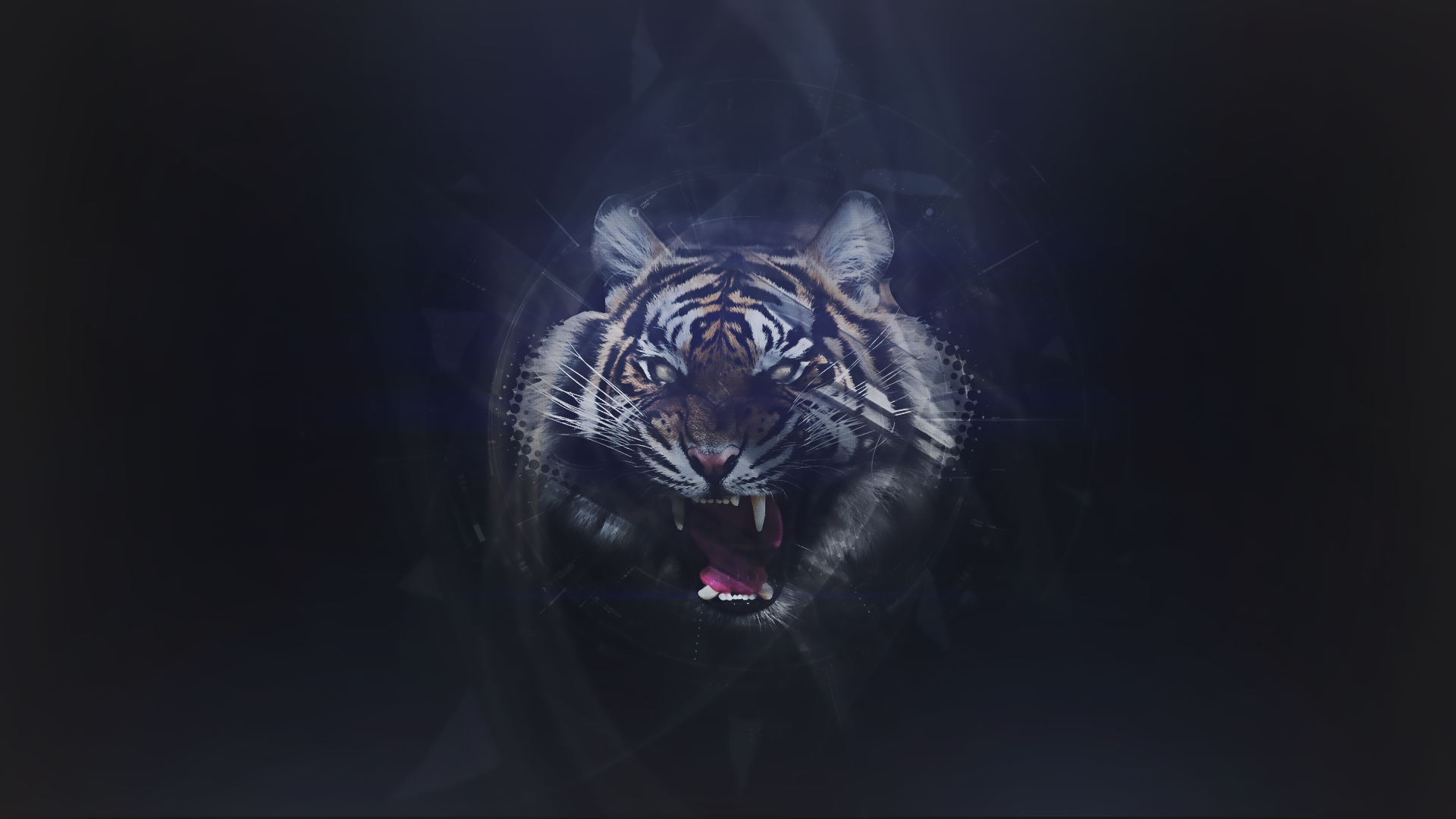 Abstract tiger wallpaper by zeracreations on deviantart abstract tiger wallpaper by zeracreations abstract tiger wallpaper by zeracreations altavistaventures Choice Image