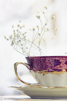 A Cup of Peace..