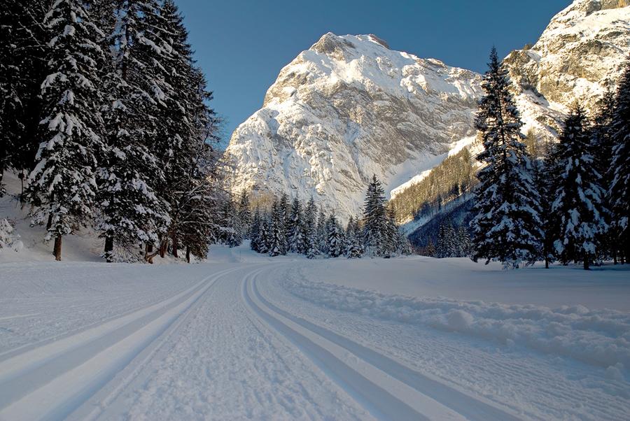 Winter wonderland II by mutrus