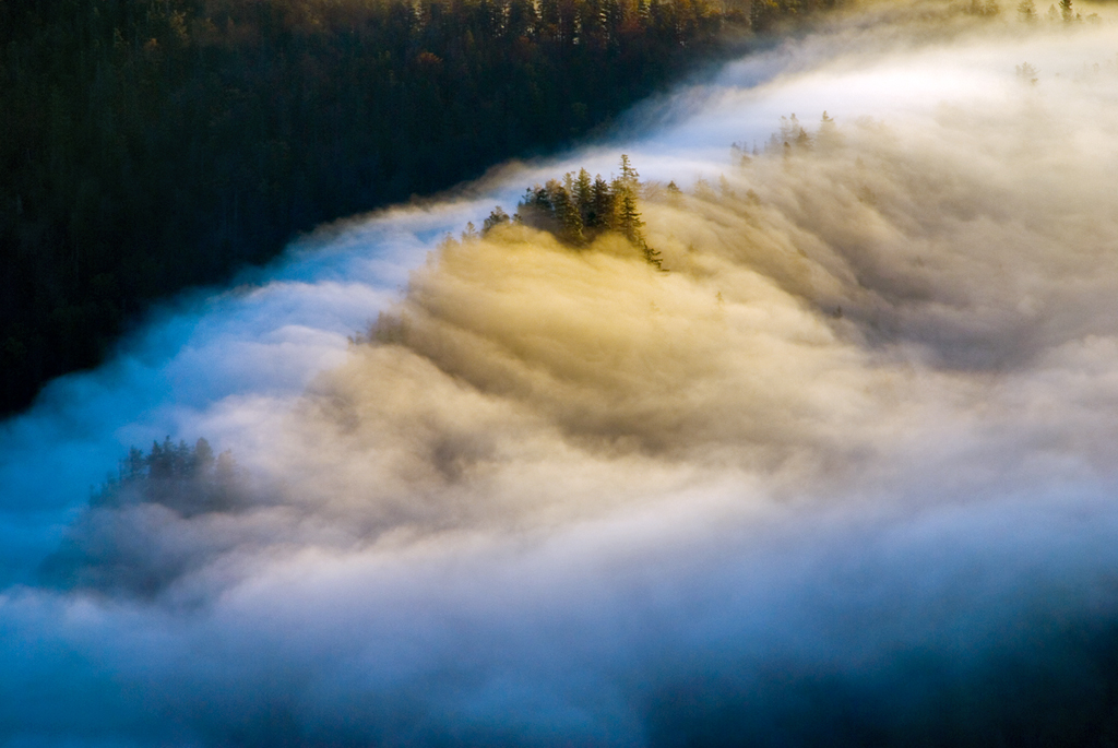 Sea FoG by mutrus