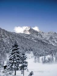 Winter wonderland by mutrus