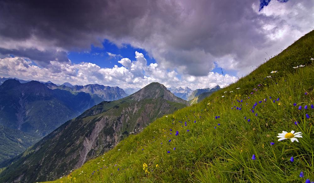 Alpine summer 2012 by mutrus