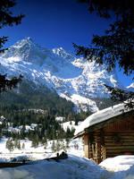 Winter in German Alps 3 by mutrus