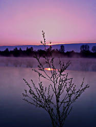 The spring sunrise by mutrus