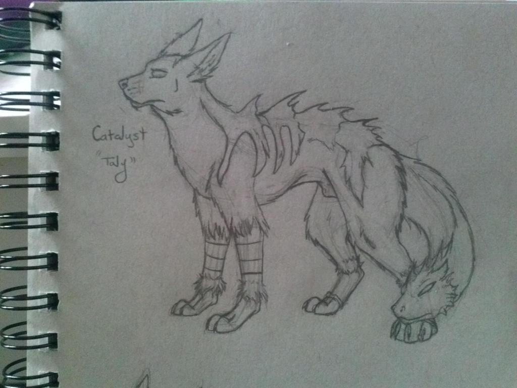 Catalyst New Design by NaniV