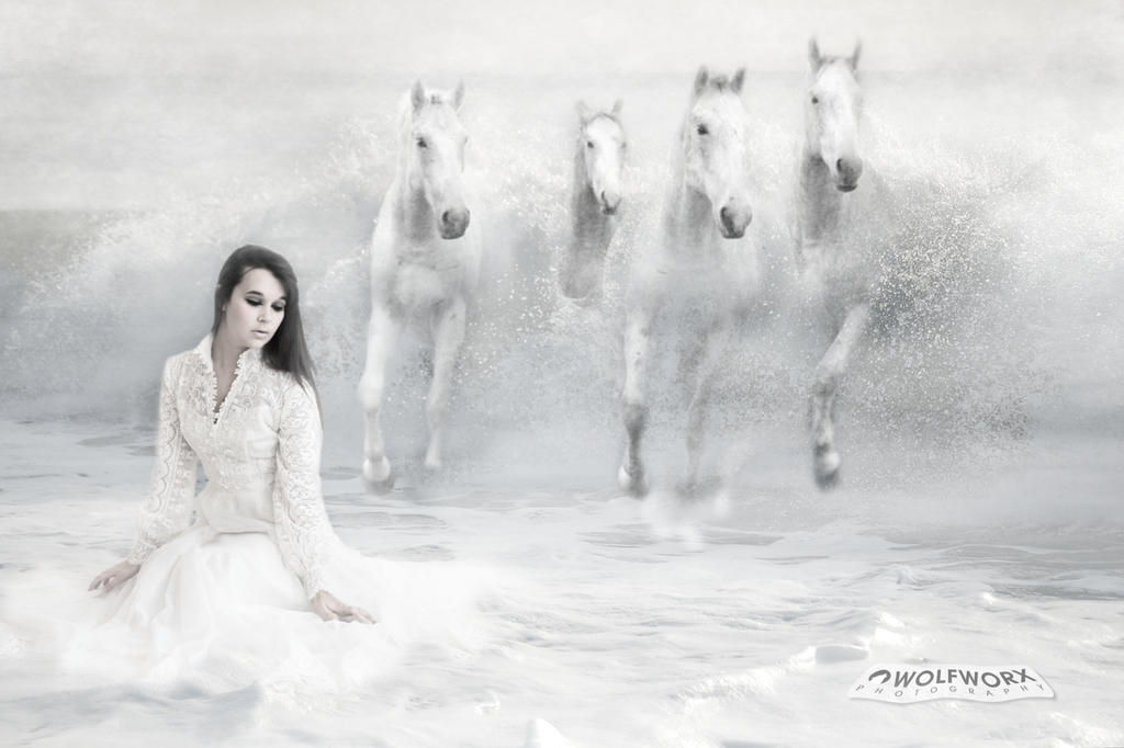 Four White Stallions by wolfworx