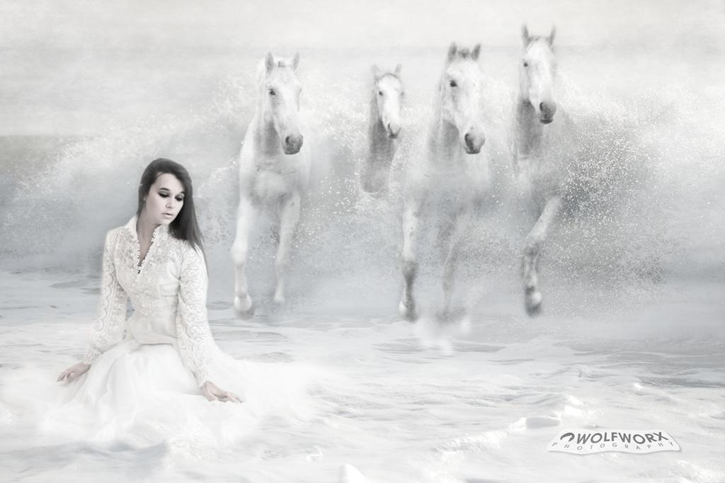 Four White Stallions by wolfworx