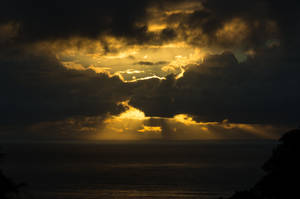Stock-wolfworx-Sunrise-Imk59122 by wolfworx